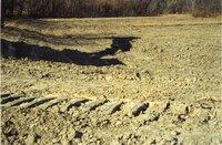 1999 - Shallow water wetland established on Robert Yaeger farm