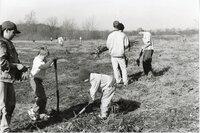 1999 - Boy Scouts plant trees