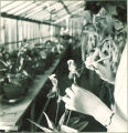 Student inspecting a flower in greenhouse, The University of Iowa, 1930s