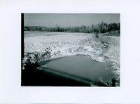 Packard Creek, 1965