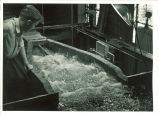 Examining water flow in Hydraulics laboratory, The University of Iowa, 1950s