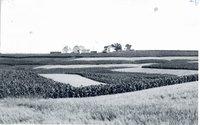 Paul Hansen farm, 1961