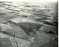 Terraces, 1966
