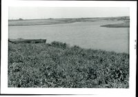Photograph Collection of Carlson Pond, 1969