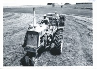 Making hay on Louis Lane's land, 1966
