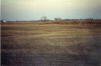 Terraces on Gary Schweitzer's farm
