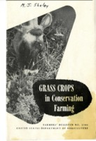 Grass crops in conservation farming