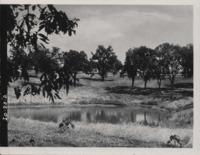 Pond on the Brown farm.