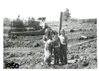 Herman Wolf farm, 1950