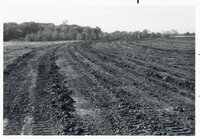 1977 Land being prepared for earth retaining dam and drainage system