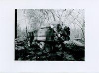 Pulpwood, 1965
