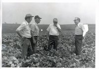 Harold Buckley in field with three unidentified men