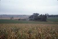 Terraces and a wildlife area on Ron Huseman's farm.