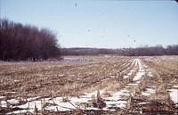 Simonsen-Rupp farmland in winter.