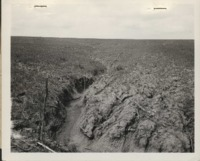 Erosion Damage on Robert R. Tice's Farm.