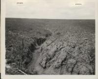 Erosion Damage on Robert R. Tice's Farm.