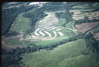 Everett Wright land, 1949