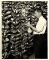 Henry A. Wallace with ears of corn at Clyde Herring's garage, Des Moines, Iowa, 1920s