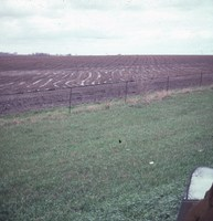 Farmland with chisel plow erosion in Cherokee County, Iowa.