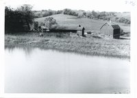 Milton Kettman's spring fed pond, 1965