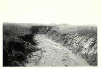 Large gully