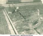 Swimmers, The University of Iowa, 1950s