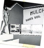 Mulch tillage