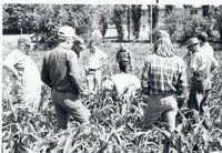 1978 Group in No-till corn tour