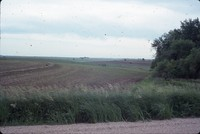 Residue contoured crops on the farm of Fred Conley.