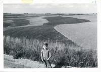 Little boy standing on edge of road with Paul Hansen's strip cropping in background, 1962