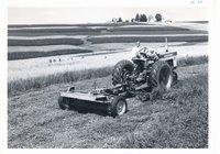 Hay making on Lorrain Gray farm, 1966
