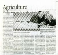 Windbreaks a Plus for Area Farmsteads