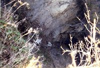 Photograph Collection Labeled Rhodes & DNR, 2003