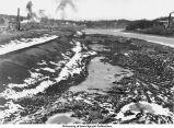 Iowa River dike construction, Iowa City, Iowa, January 17, 1934