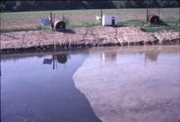 Ray Billingley's pond