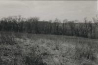 Nick Nichols' Farm.