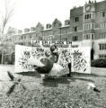 Homecoming lawn display of Lay 'Em and Pluck 'Em, 1968