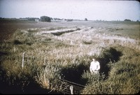 Man stands in a gully.