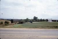 Windbreak on Tim Perrin's farm.