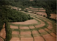 Paul Frantzen farmland