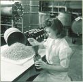 Pharmacy student pouring pills into bottle, The University of Iowa, 1940s