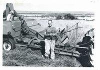 Phillip Gregerson combining seed crop, 1963