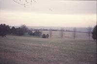 Shelterbelt, 1999