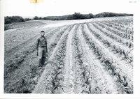 Joe Gerlack Jr. strip cropping, 1963