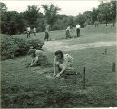 Pharmacy students transplanting and tending plants outside, The University of Iowa, 1940s